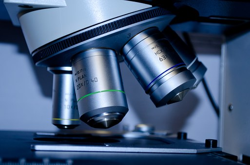 badania makroskopowe
